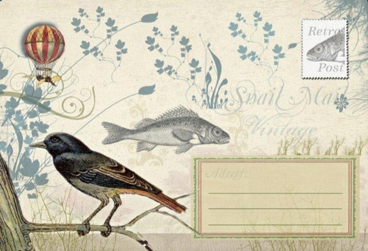 Bird & Fish / Post voor jou