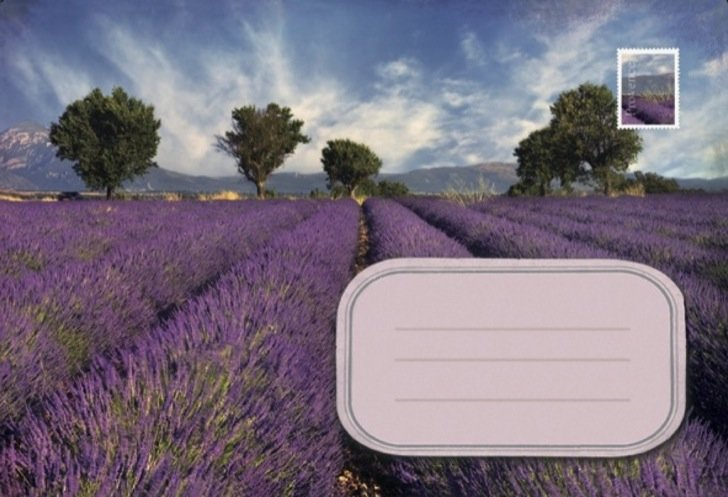 Lavender / Post voor jou