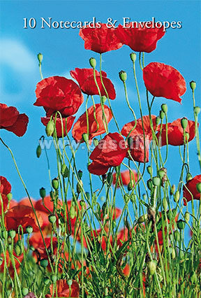 Poppies notecards*