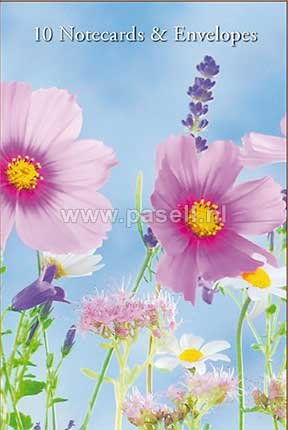 Wild Flowers notecards*