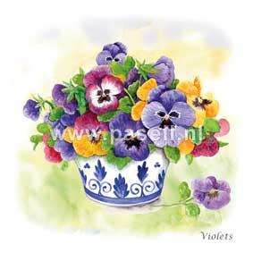 Violets / PLS wenskaart