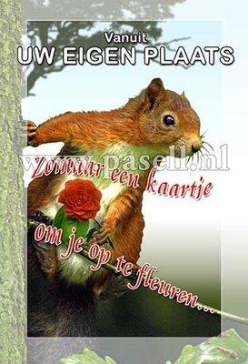 Plaatsnaamkaart Eekhoorn