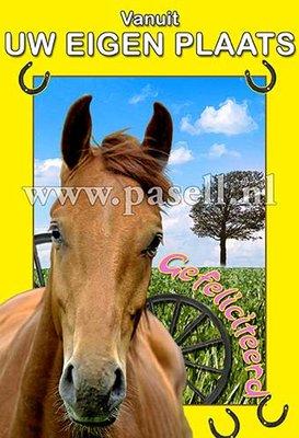 Plaatsnaamkaart Paard