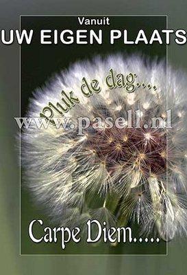 Plaatsnaamkaart Carpe Diem